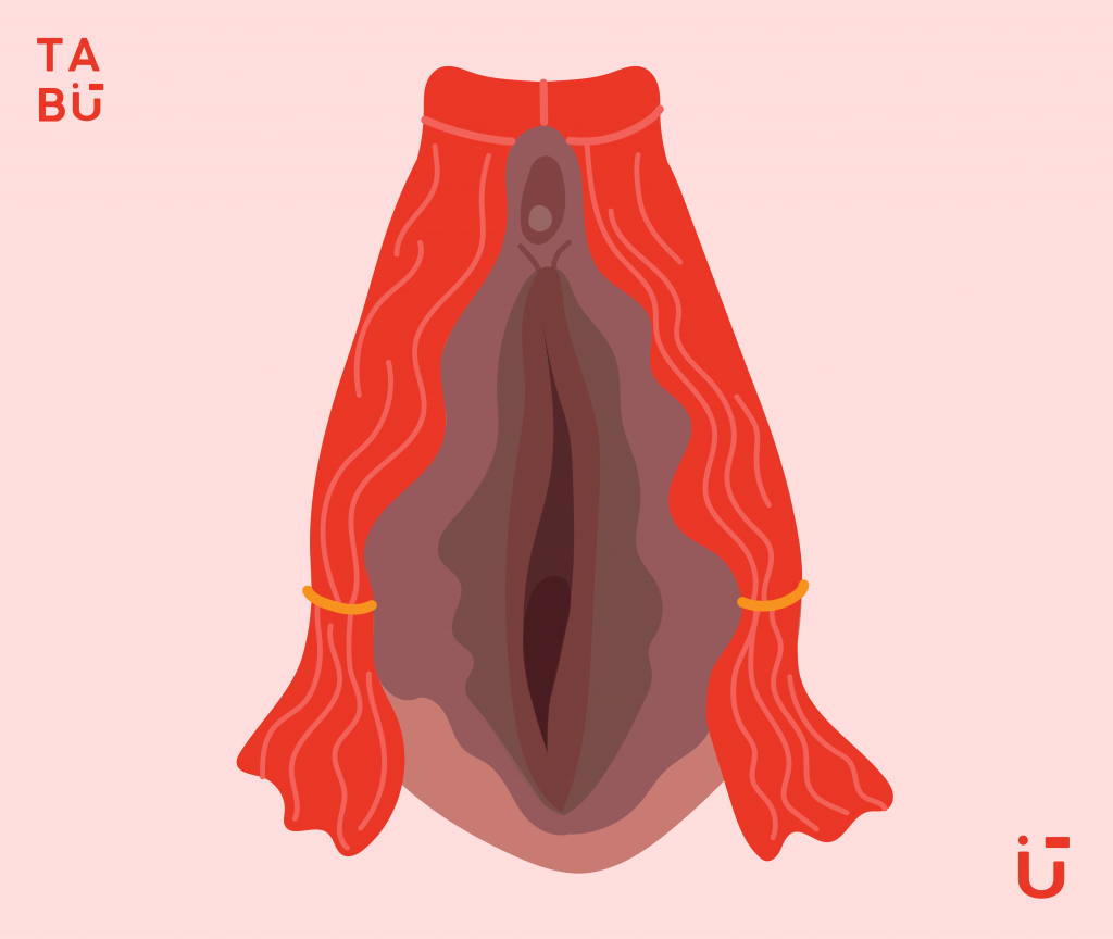the vulva is the entrance to the vagina